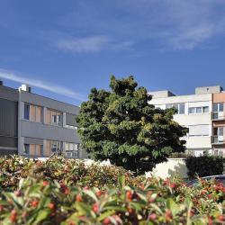 ???? Hôpital Privé La Châtaigneraie - Elsan Beaumont