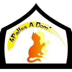 4pattes A Dom' Angers