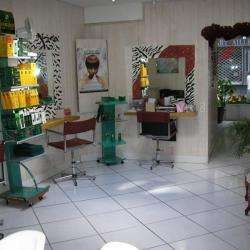 Le Salon...