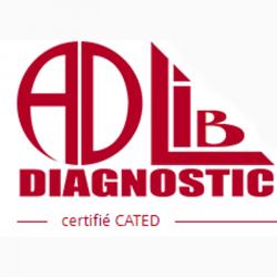 Adlib Diagnostic Arpajon