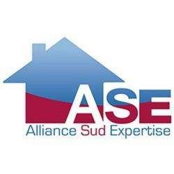 Alliance Sud Expertise Vannes