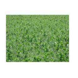 Alimentation bio ANDRIEU PATRICE - 1 -