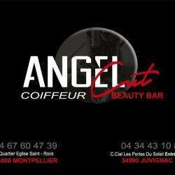 Angel Cut Coiffure Juvignac