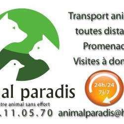Animal Paradis Nice