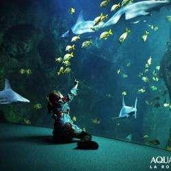 Aquarium La Rochelle La Rochelle