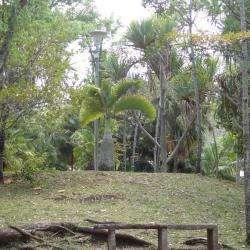 Arboretum Jules Maillot