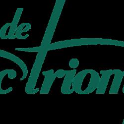 Arc De Triomphe Auto - Porte D'asnières