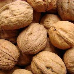 Alimentation bio ARPAILLANGE JEAN - 1 -