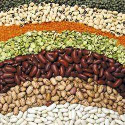 Alimentation bio ASSOCIATION COEUR VERT - 1 -