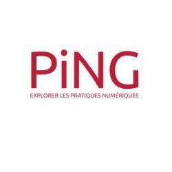 Association Ping Nantes