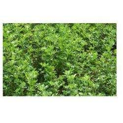 Alimentation bio AYME Philippe - 1 -
