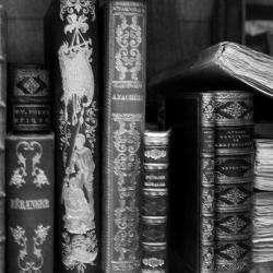 Bibliotheque Municipale Saint Nizier Le Désert