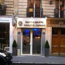 C4v Paris