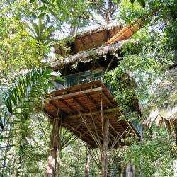Camp Canopée Kourou