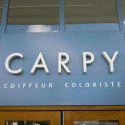 Carpy Coiffeur Coloriste