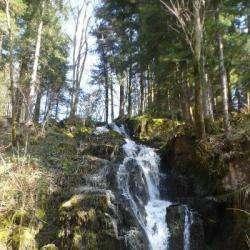 Cascade Du Saut Du Bouchot Sapois