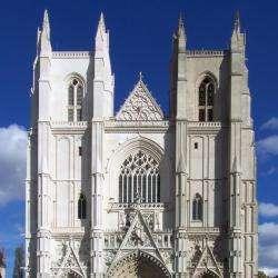 Cathédrale Saint Pierre Et Saint Paul  Nantes