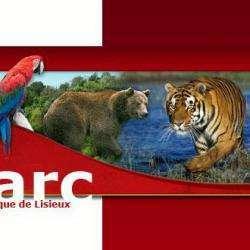 Cerza Parc Zoologique Lisieux Hermival Les Vaux