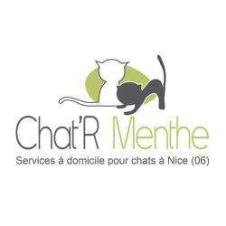 Chat'r Menthe Nice