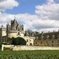 Château De Brézé Brézé
