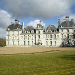 Château De Cheverny Cheverny