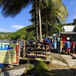 Parcs et Activités de loisirs Club de plongée CIP Guadeloupe - 1 -