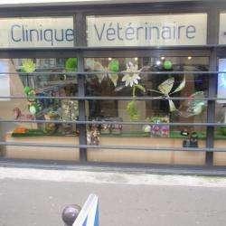 Vétérinaire Clinique vétérinaire du Dr  Hollanders - 1 -