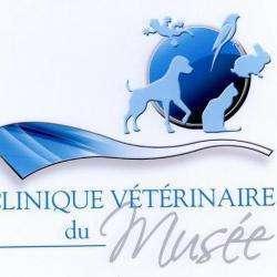 Clinique Vétérinaire Du Musée Anzin