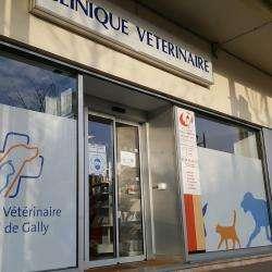 Hôpitaux et cliniques Clinique vétérinaire du Val de Gally - 1 -