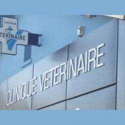 Clinique Veterinaire  L'union