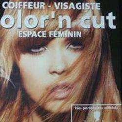 Color'n Cut