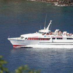 Agence de voyage Compagnie Deher - 1 -
