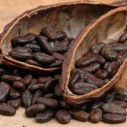 Chocolatier Confiseur Comptoir Du Cacao - 1 -