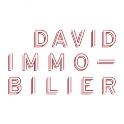 David Immobilier Paris