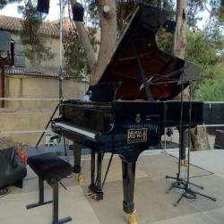 Delmas Musique Perpignan