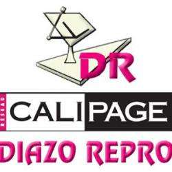 Diazo Repro Toulouse