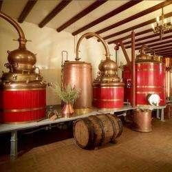 Distillerie Armand Guy Pontarlier