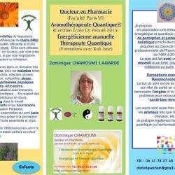 Dominique Chamoumi Maisons Laffitte