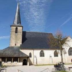 Eglise Saint Etienne Cheverny