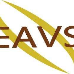 Electricien à Votre Service Eavs Paris