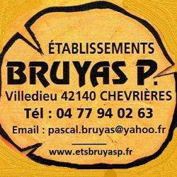 Ets Bruyas P