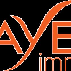 Fayet Immo Vienne
