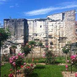 Forum Antique