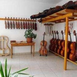 Franck Chauty Luthier Châtel Guyon