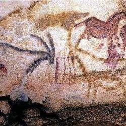 Grottes Ornées Vallée De La Vézère Les Eyzies De Tayac Sireuil
