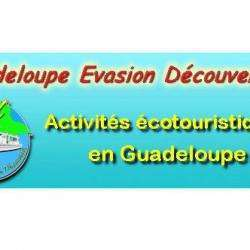 Agence immobilière GUADELOUPE EVASION DECOUVERTE - 1 -
