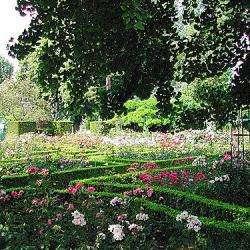 Jardin Des Plantes De Rouen Rouen