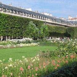 Jardin Du Palais Royal Paris