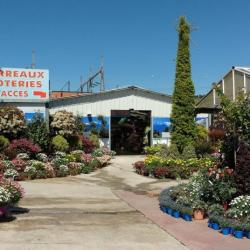 Jardinerie Petruccioli Nice