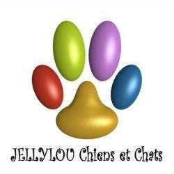 Jellylou Chiens Et Chats Rilhac Rancon